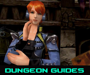 Dungeon Guides
